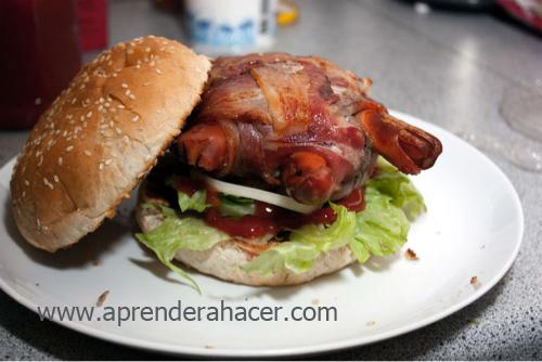 hamburgesa tortuga4