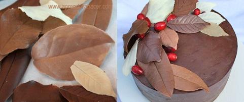 Principal hojas de chocolate